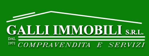 Galli Immobili Logo1000 copia